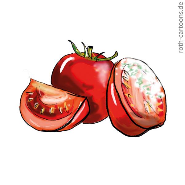 illustration schimmlige verdorbene tomaten