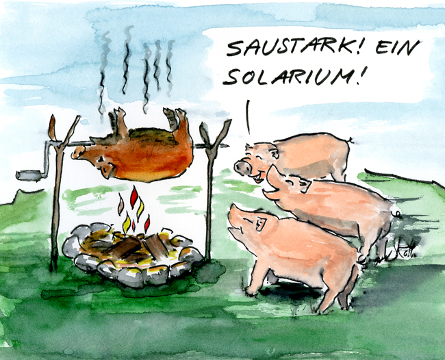 Schweine stehen vor Grill mit Spanferkel