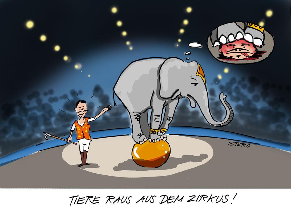 Elefant auf Ball - der Dompteur hält einen Elefantenhaken