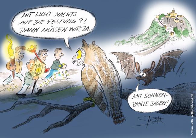 Stefan Roth Karikatur Hohentwiel Beleuchtung Eule