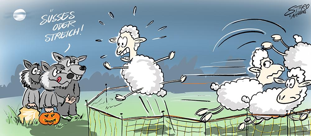 Als Wölfe verkleidete Kinder schocken Schafe.