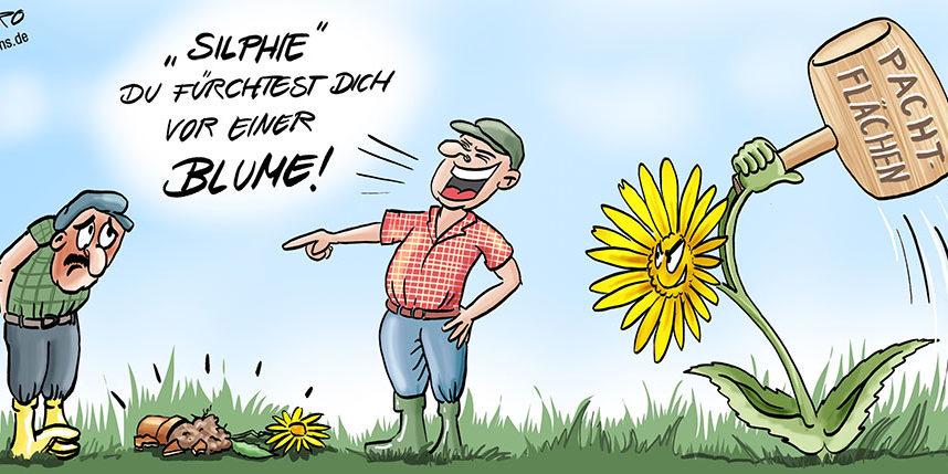 cartoonkarikaturdurchwachsene silphie  rothcartoons de