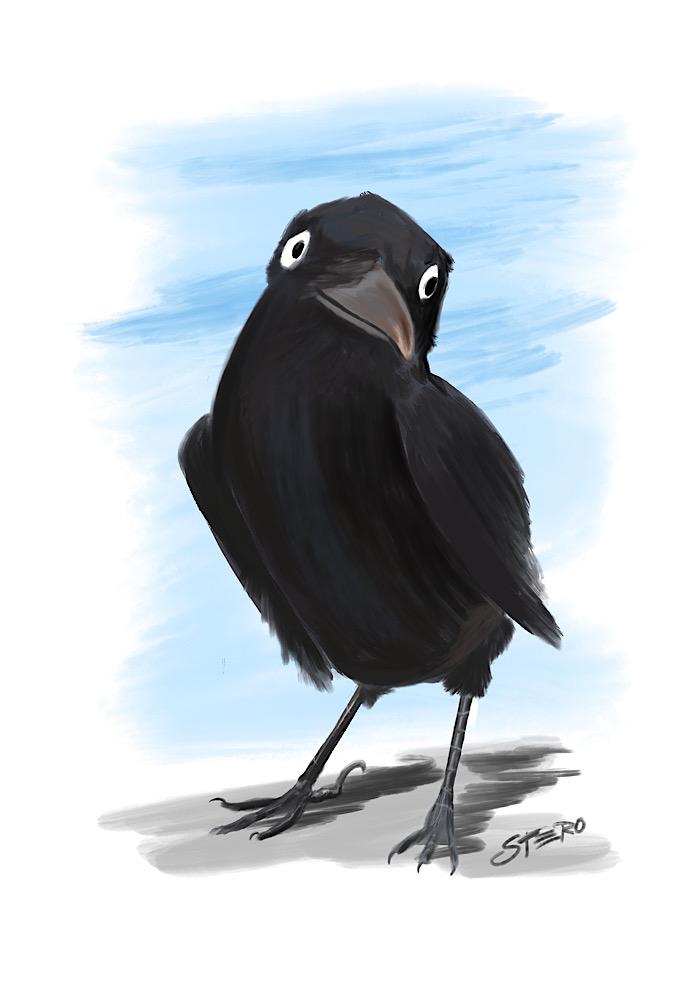 Comic-rabe-illustration-grafik-raven