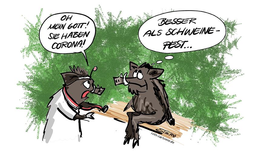 Bild-Comic-Cartoon: Ein Wildschwein sitzt beim Arzt und erfährt, dass es Corona hat. Das Schwein ist glücklich, denn corona ist noch besser als Schweinepest.