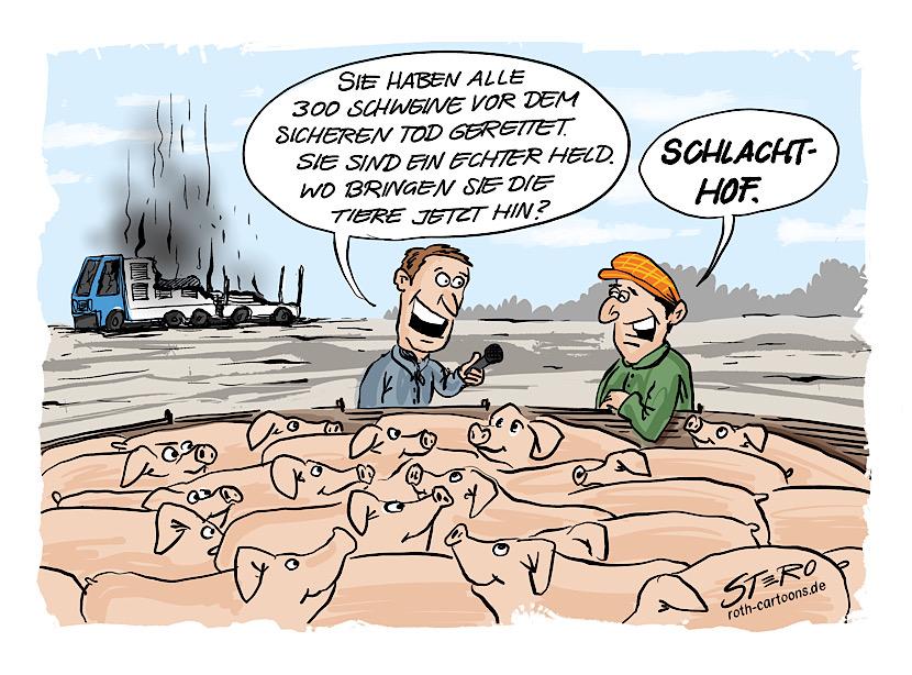 cartoon-comic-bild zu tiertransport: ein tiertransporter brennt. der fahrer hat alle tiere schweine gerettet. und bringt sie zum schlachthof-