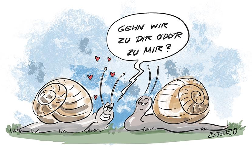 Cartoon zu Dating und Liebe. Eine Schnecke fragt die andere beim Flirten: Zu dir oder zu mir?